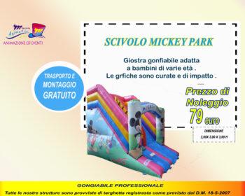 scivolo mickey park copia