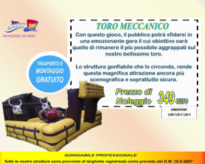 TORO MECCANICO copia